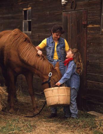 compassionate: Feeding the horse