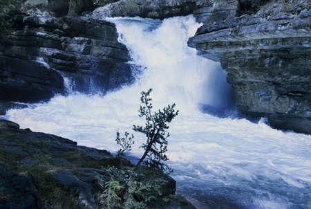 tanasiuk: Waterfall in Johnson Canyon, Banff, Alberta, Canada