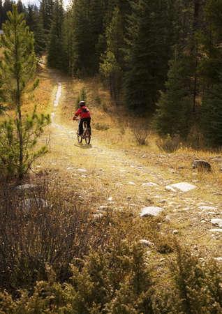 Teenager riding bike down path Stock Photo - 7210283