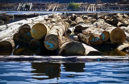 tanasiuk: Log driving