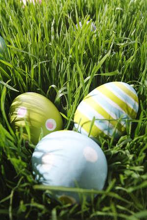 Paas eieren in het gras