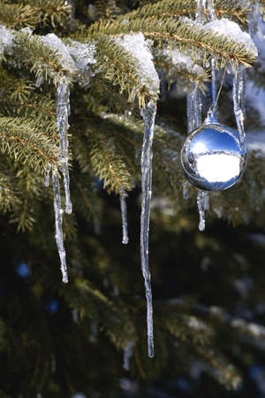 Christmas ornament on tree branch with icicles Stock Photo - 7208224
