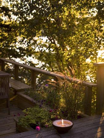 levit: Sunlight on a deck