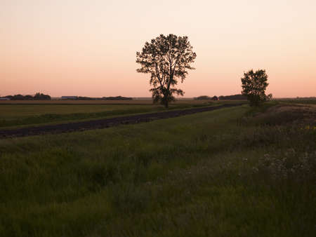 Country fields photo