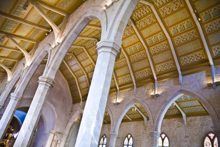 tanasiuk: Vaulted cathedral ceiling Editorial