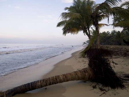 Arabische Zee, Kerala, India  Stockfoto