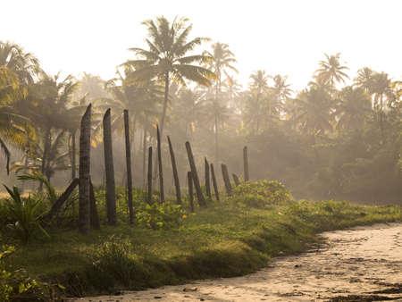 Kerala, India   photo
