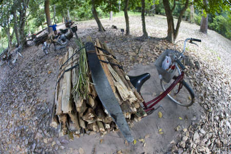 A bicycle and a bundle of firewood