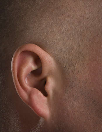 bodypart: Close up of ear