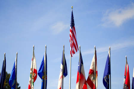american flags: American flags,multiple flags