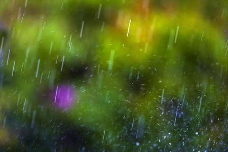 rainfall: Rainfall