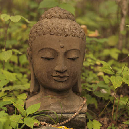 Bust of Buddha, Lake of the Woods, Ontario, Canada Stock Photo - 7551743