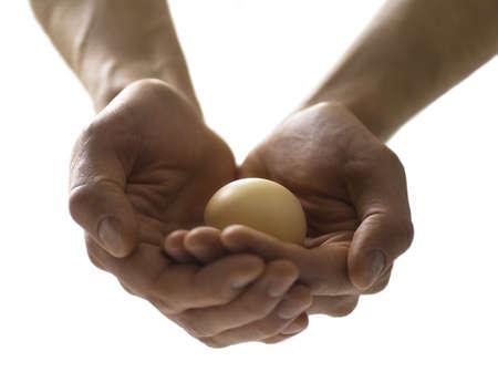 cautious: Precious egg