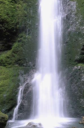 Marymere Falls,  National Park, Washington, USA Stock Photo - 7551798