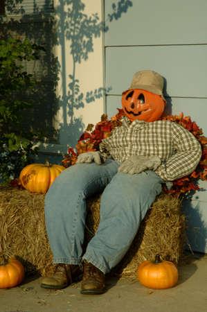 decor: Pumpkin scarecrow