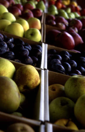 Closeup of produce Stock Photo - 7551579