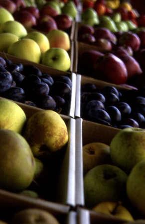 vitamin store: Closeup of produce