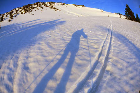 alpenglow: Skiers shadow in alpenglow, Diamond Peak