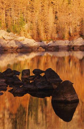 Saint Mary's Alpine Park Stock Photo - 7551864