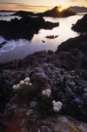 Queen Charlotte Islands Stock Photo - 7551785