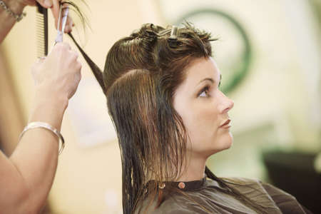 Woman having her hair cut Stock Photo