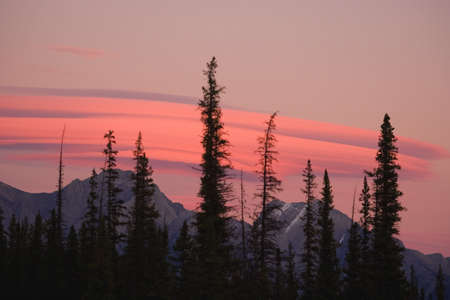 banff national park: Elongated pink clouds over the Rocky Mountains