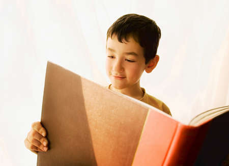 Boy reading a book Stock Photo - 7559233