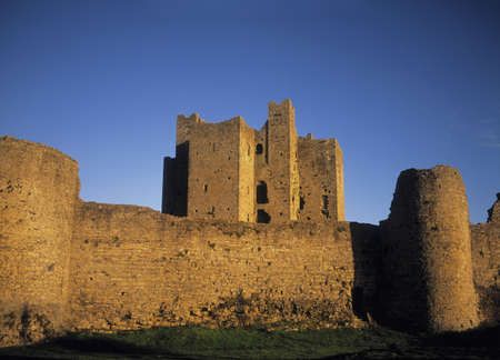 county meath: Trim Castle in County Meath, Ireland