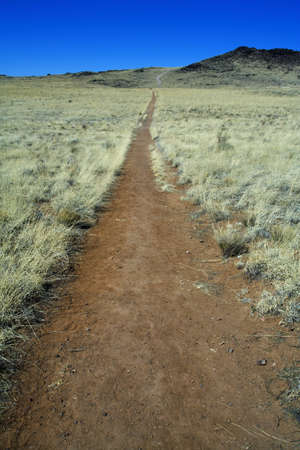 raniszewski: Trail leading to a volcano