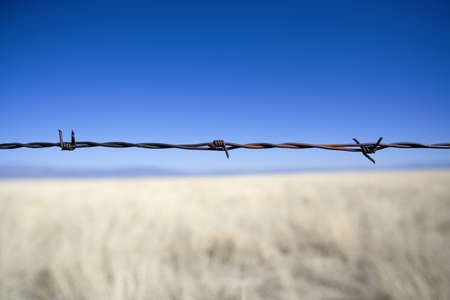 fencing wire: Barbed wire fence