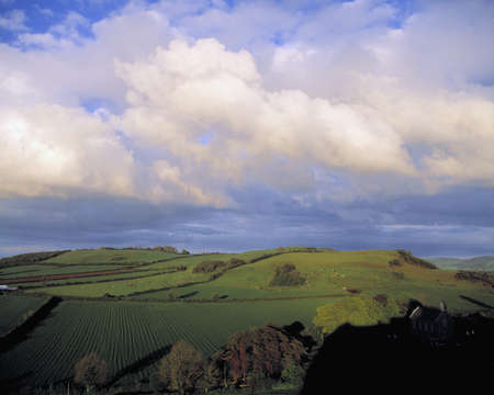 rolling landscape: Fields around Dunamace, Co Laois, Ireland