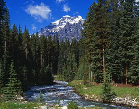 banff national park: Mountain stream LANG_EVOIMAGES
