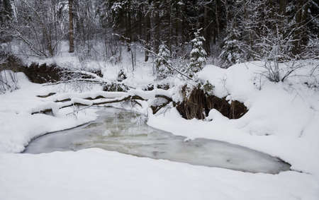 Creek in the snow Stock Photo - 7559506