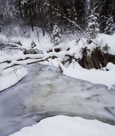 Creek in the snow Stock fotó