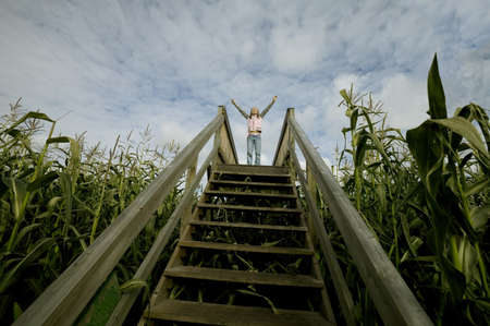 victorious: Person standing at the top of stairs in a corn field