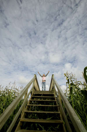 Person standing at the top of the stairs in a corn field Stock Photo - 7559400