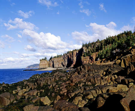 Rocky shoreline with forest area above Stock Photo - 7559514