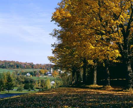 countryside landscape: Autumn scene