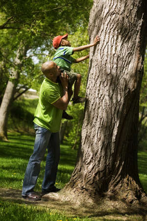 Father helping son to climb on tree Zdjęcie Seryjne