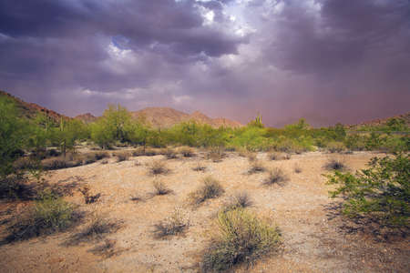 Dust storm, Arizona, U.S.A