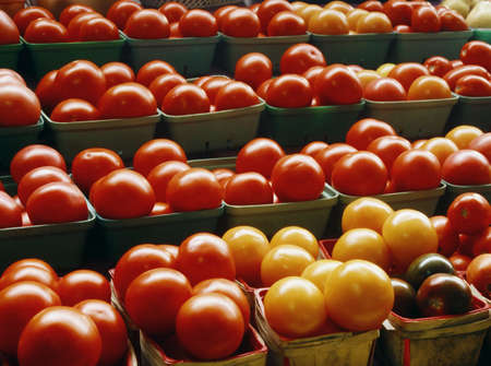 Baskets of tomatoes Stock Photo - 7559294