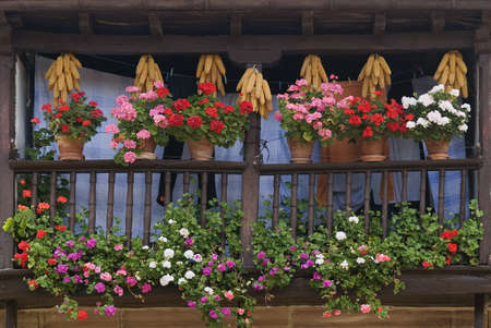 Wooden balcony displaying flowers and drying corn cobs, Carmona, Cantabria, Northern Spain   Archivio Fotografico