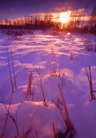 winter sunrise: Snow-covered field at sunset Stock Photo