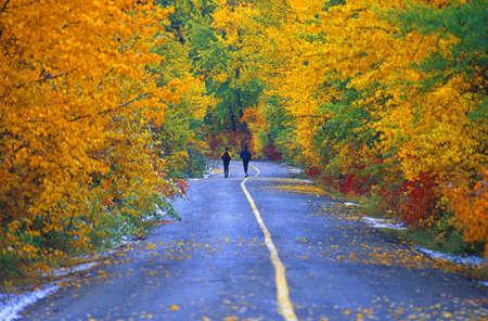 Dos personas trotar en carretera en el parque en oto�o Foto de archivo - 8244093