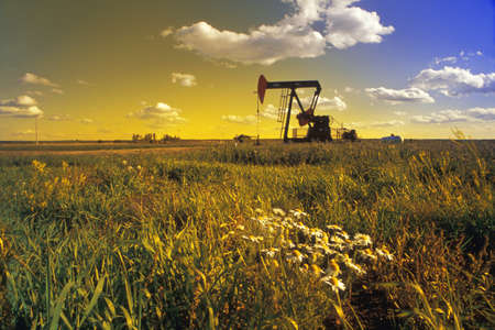 barley field: An oil derrick Stock Photo