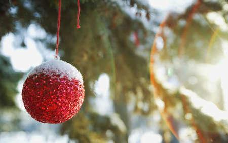 glubish: A Christmas ball Stock Photo