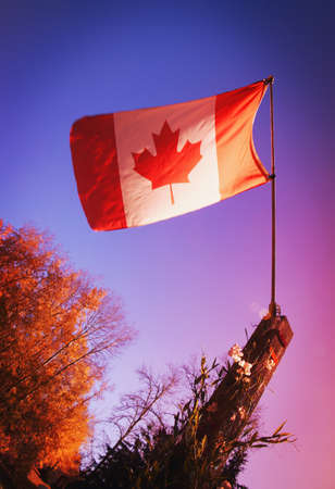 imaginor: Canadian flag