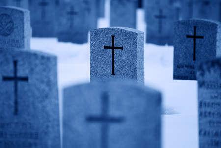 daremny: Wiersze z grobów wojny