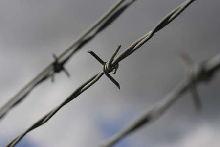 Closeup of barbed wire fencing Stock Photo - 8242383