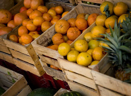 Fresh fruit in the market Stock Photo - 8242371